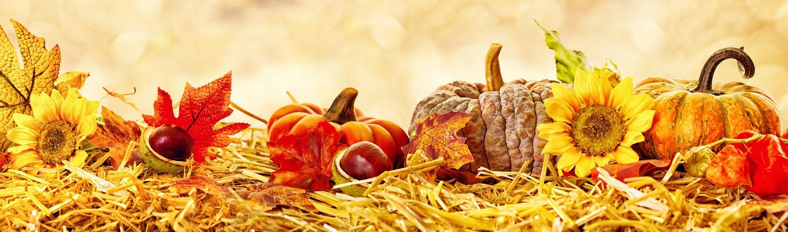 Jesienne warzywa i owoce wpływające na naszą urodę